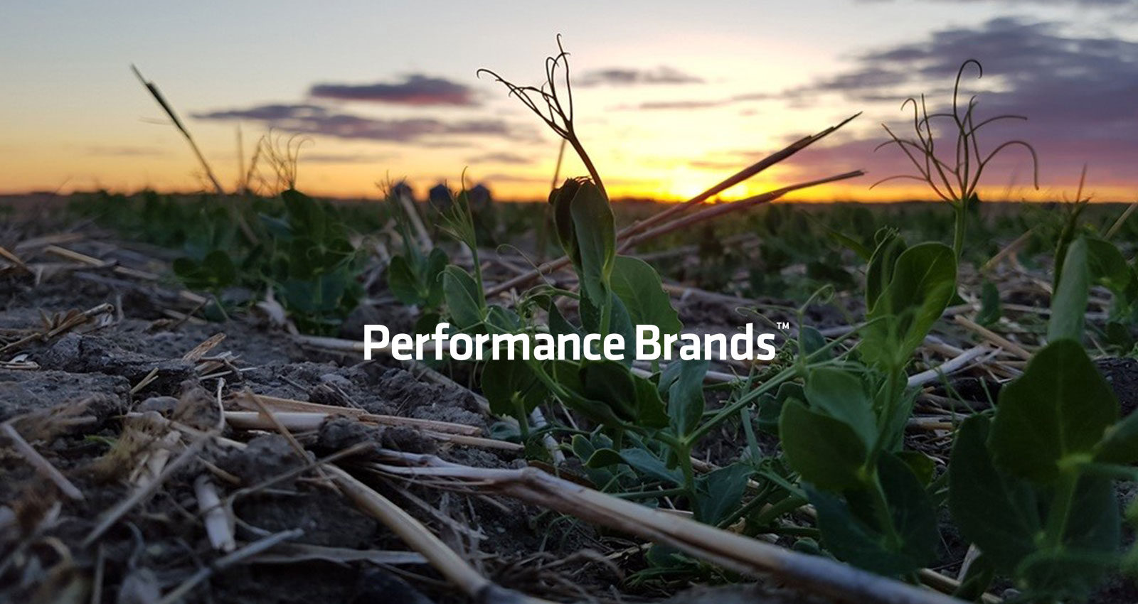WinField United | Performance Brands