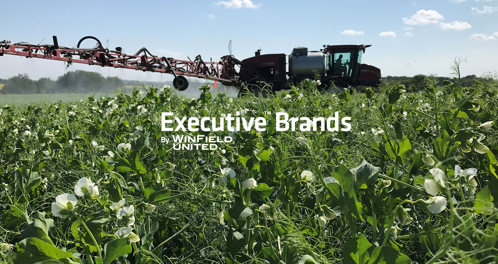 WinField United | Executive™ Brands